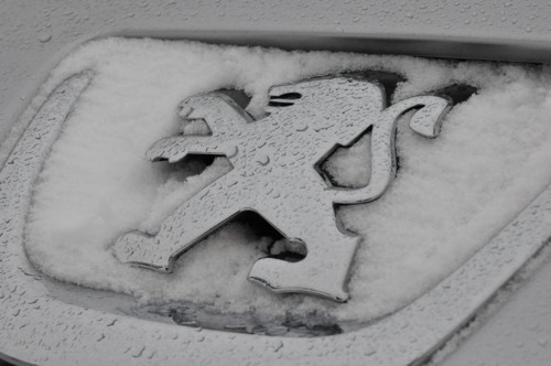 Peugeot badge snow Leamington